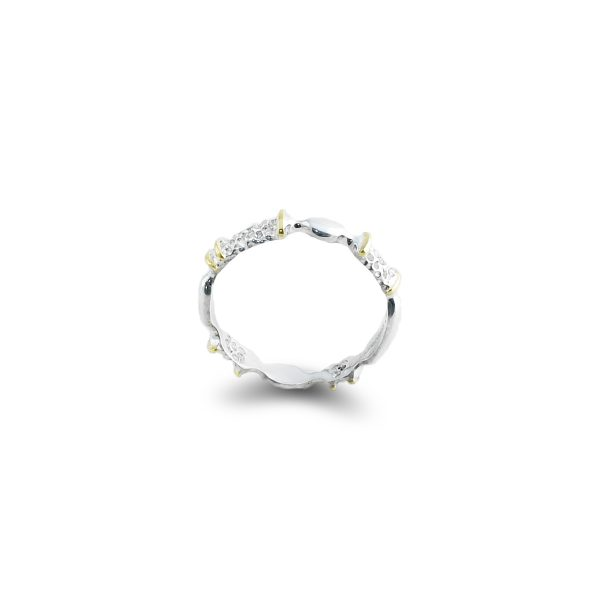 silver-gold-ring