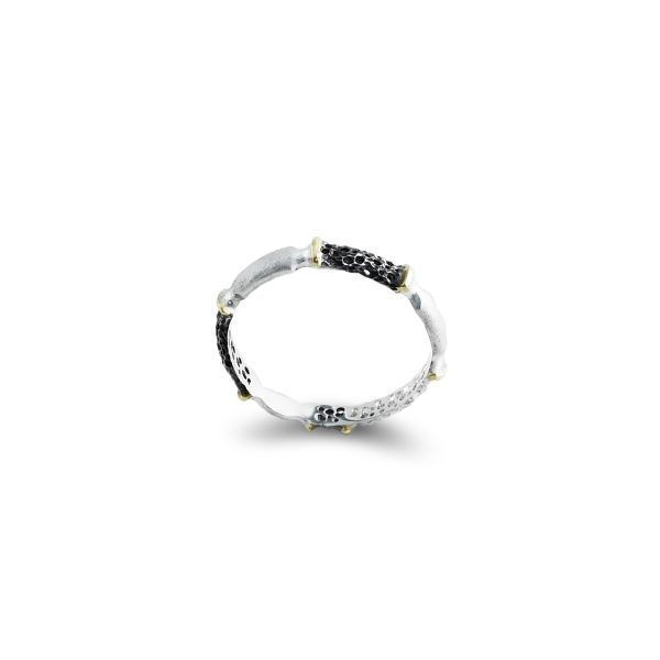 silver-gold-ring-black-white